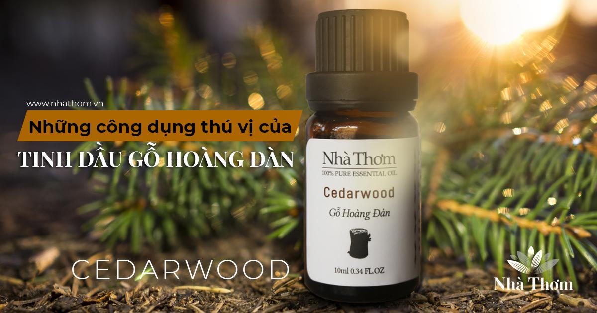 Tinh dầu gỗ Hoàng đàn và những sự thật thú vị về công dụng