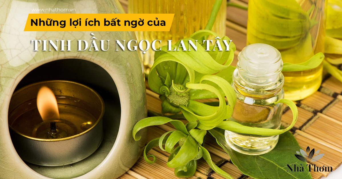 Cách sử dụng và những lợi ích bất ngờ của tinh dầu ngọc lan tây