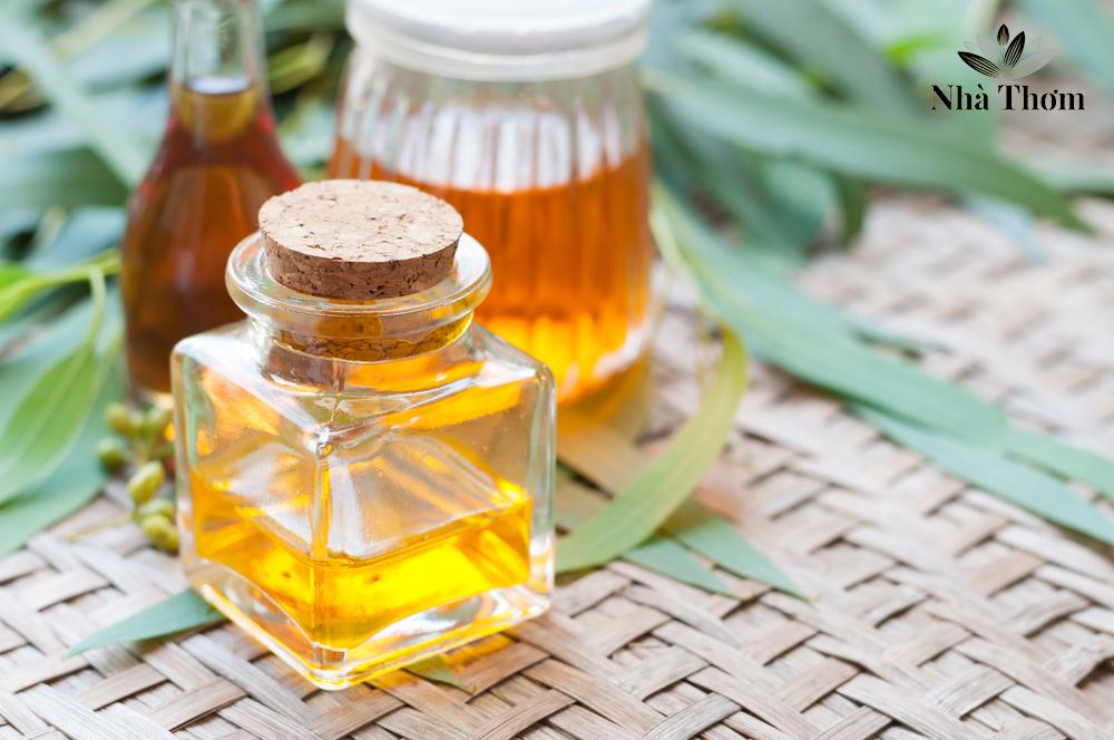 Tinh dầu bạch đàn chanh điều trị vết thương